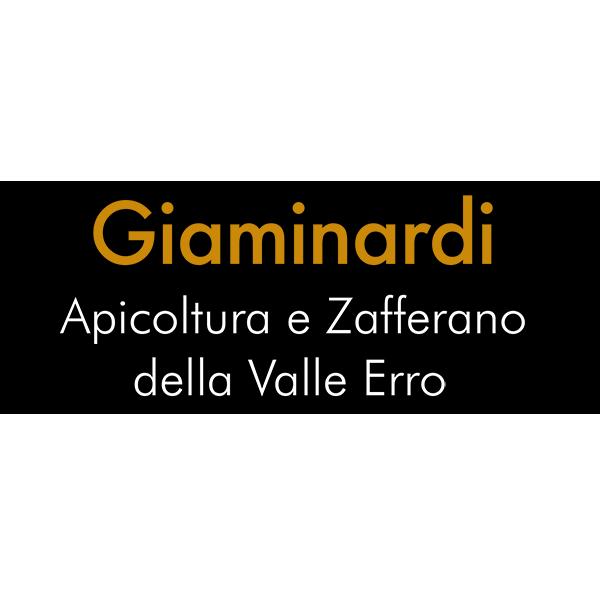 logo Giaminardi Gianluigi